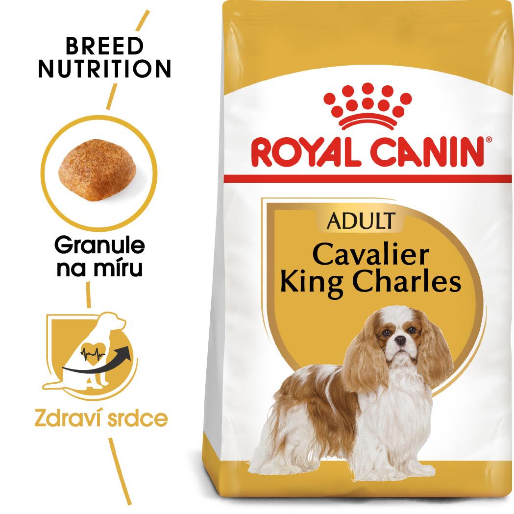 Royal Canin Cavalier King Charles Adult - granule pro dospělého kavalír king charles španěl 1,5kg