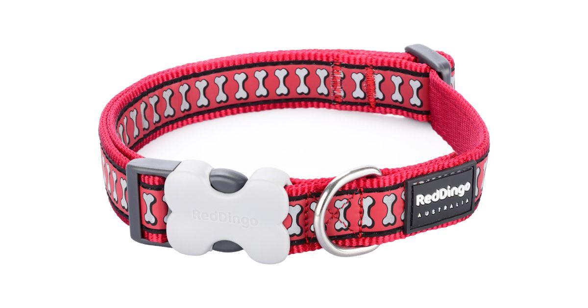 Obojek RD BONES RED - 2/31-47cm