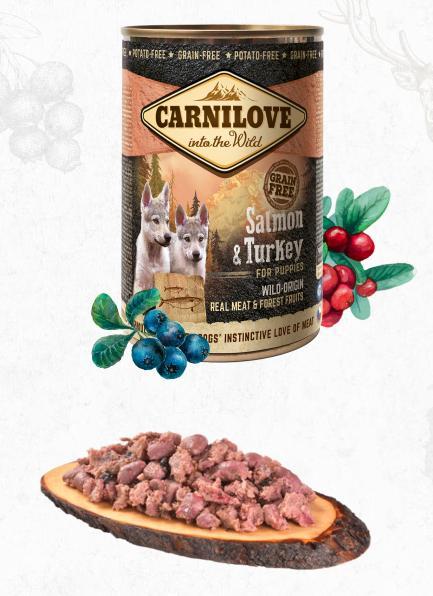 CARNILOVE  konz.  PUPPY SALMON/turkey prodejna