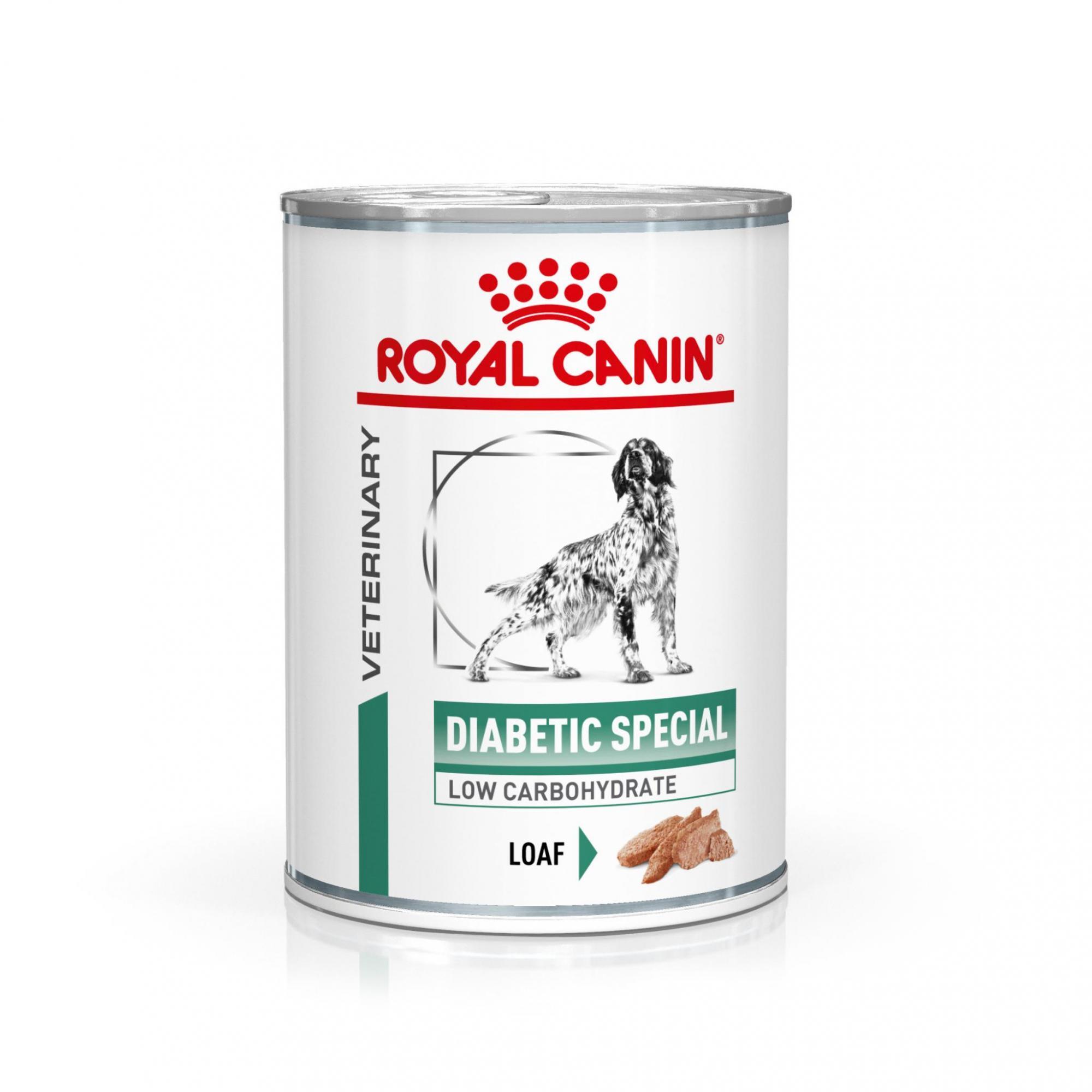 Royal Canin Veterinary Health Nutrition Dog DIABETIC konzerva 410g