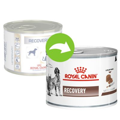 Royal Canin/ Feline Veterinary Diet RECOVERY konzerva 195g