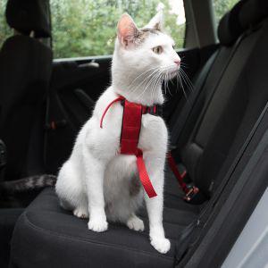 Postroj bezpečnostní pro kočku (trixie) 20-50cm