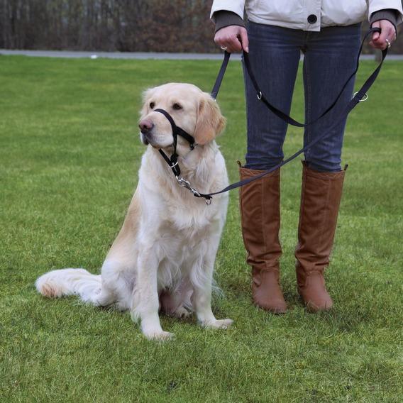 Dog  TOP TRAINER (trixie) /XL