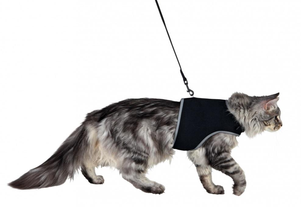 Postroj XCat vestička pro kočky (trixie) 24-42cm/1,20m